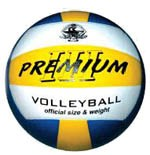 Spartan Indoor Volleyball 8001